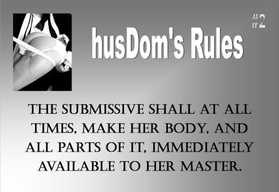 My Rules For Submissive-8539